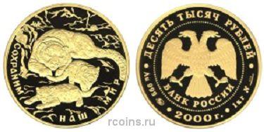 10 000 рублей 2000 года Снежный барс