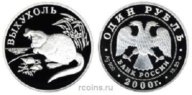 1 рубль 2000 года Выхухоль -