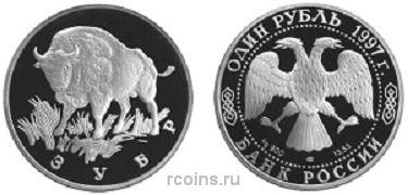 1 рубль 1997 года Зубр