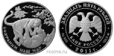 25 рублей 2011 года Переднеазиатский леопард
